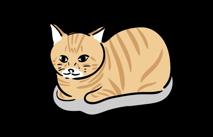 団子 ホウ 猫 酸 シロアリ駆除にホウ酸は有効?ホウ酸の効果と安全性 【ファインドプロ】